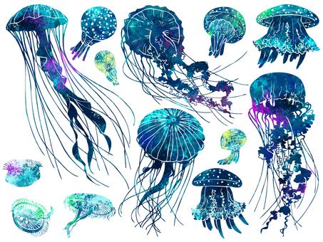 Illustration 004 Jellyfish