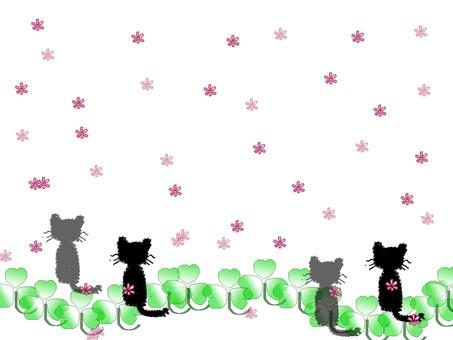 Cat frame 1
