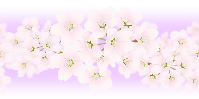 Background with (600 × 300px)