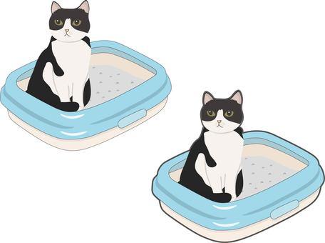 Cat toilet with cat
