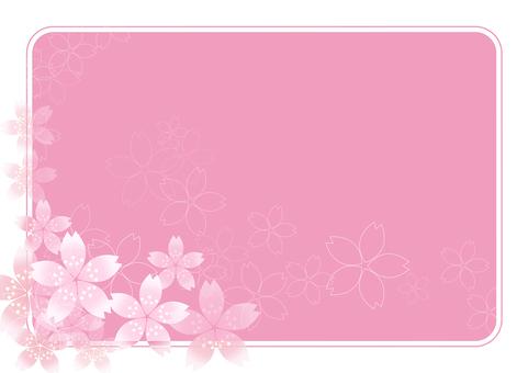 Sakura Sakura & Board 36