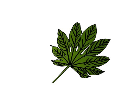Yetde leaves