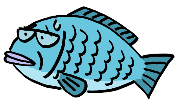 Old man fish