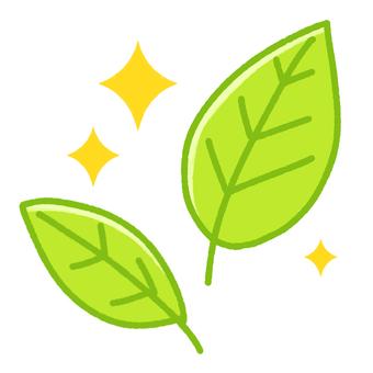 新鮮的綠葉(閃閃發光)