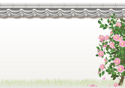 Tile wall _ mountain tea flower _ garden tree
