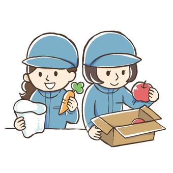 청과물의 박스 포장과 봉지 (여성)
