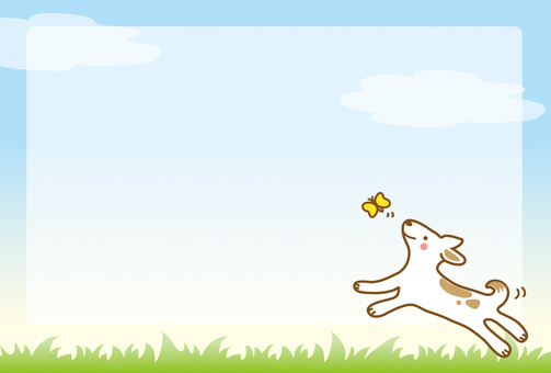 A dog playing with butterflies in the field of spring