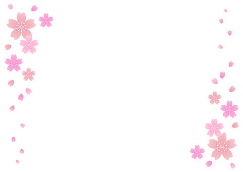 Cherry blossoms 88