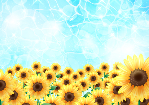 Sunflower and the sea