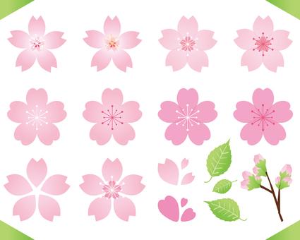 春らしいピンクで可愛い桜のセット