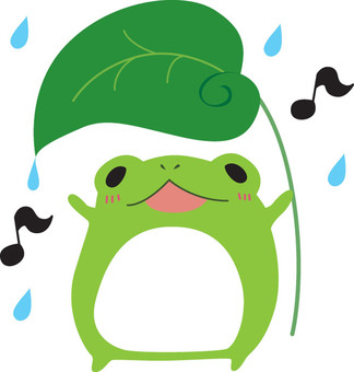 Frog who is happy with rain