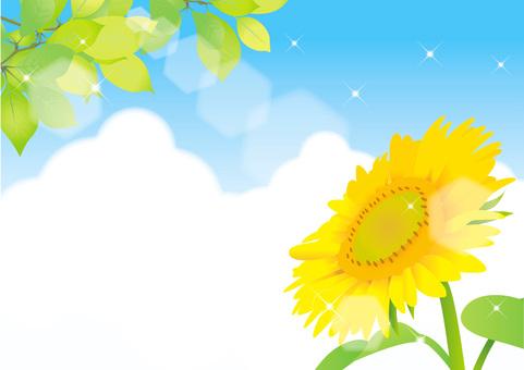 Sunflower and summer sky frame 3