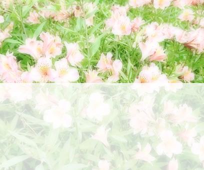 Flower message card 1 - B