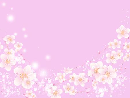 桜 dance songs