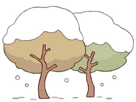 Wood (winter)