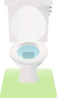 서양식 화장실