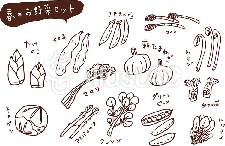 春のお野菜セット 線画のイラスト