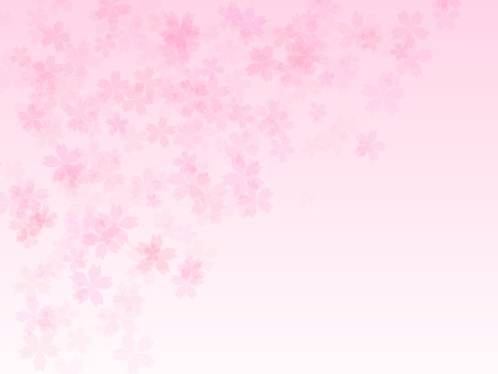 Cherry background 2