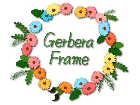 Gerbera frame with colorful shadow
