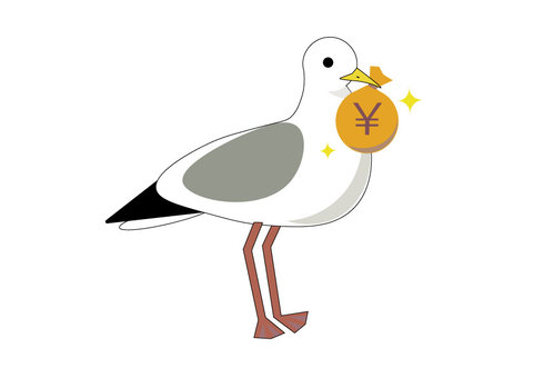 Seagull and money