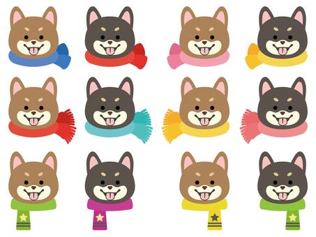 柴犬-笑顔-正面顔-マフラー