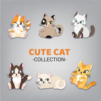 고양이 컬렉션