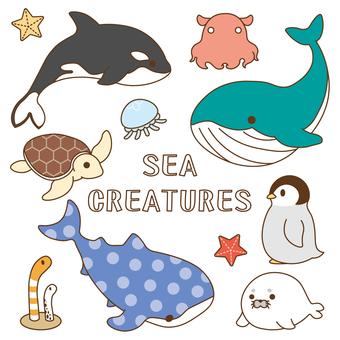 바다의 생물 컬러 세트