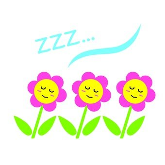 Sleeping flowers