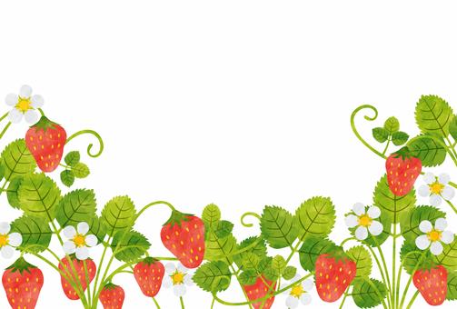 Frame / strawberry