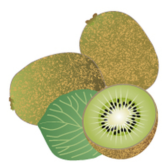 Kiwi display Recommended raw materials 20 items