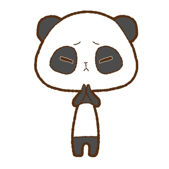 Panda apologizing