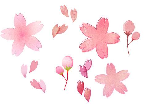 Sakura set