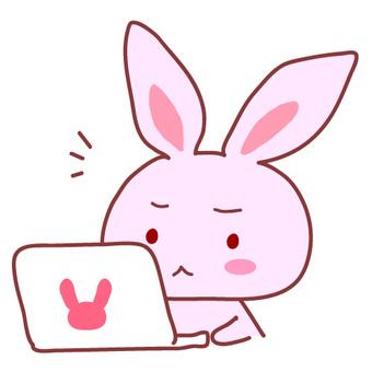 컴퓨터 문제? 토끼 그림