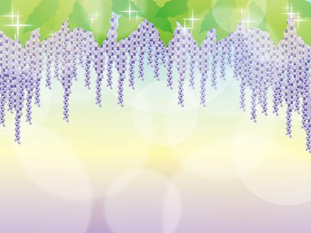 Vine _ background 01