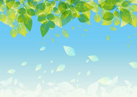 잎의 배경 001