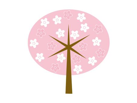 도안 벚꽃 나무 15