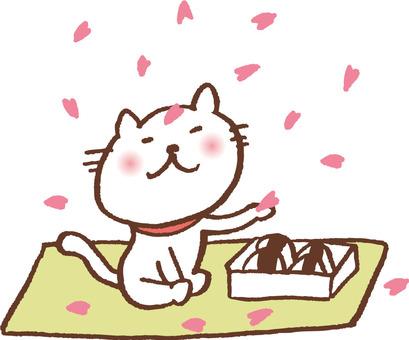 꽃놀이하는 고양이 도시락 버전