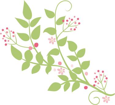 手繪植物部分