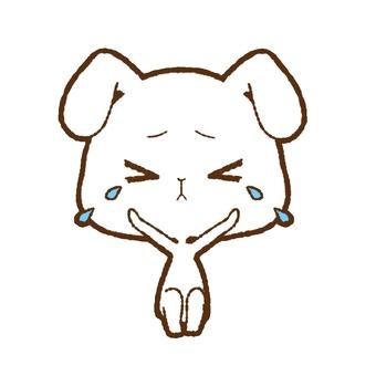 White rabbit crying