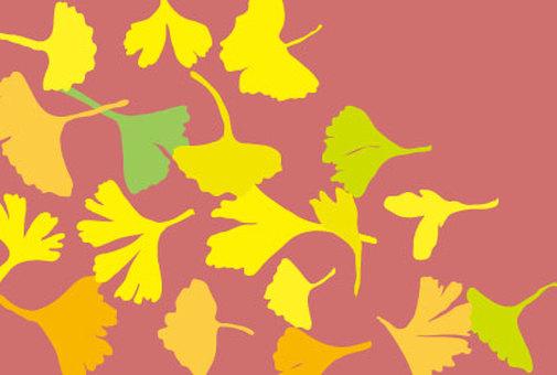 은행잎 벽지 핑크