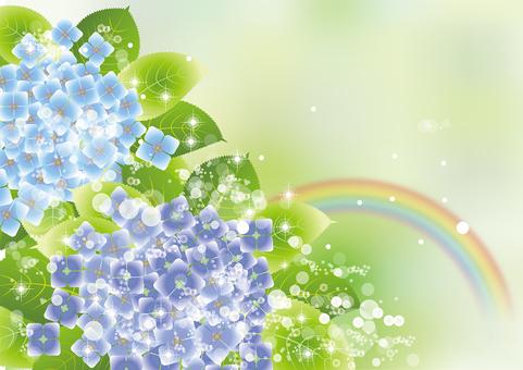 Rainbow & hydrangea 20