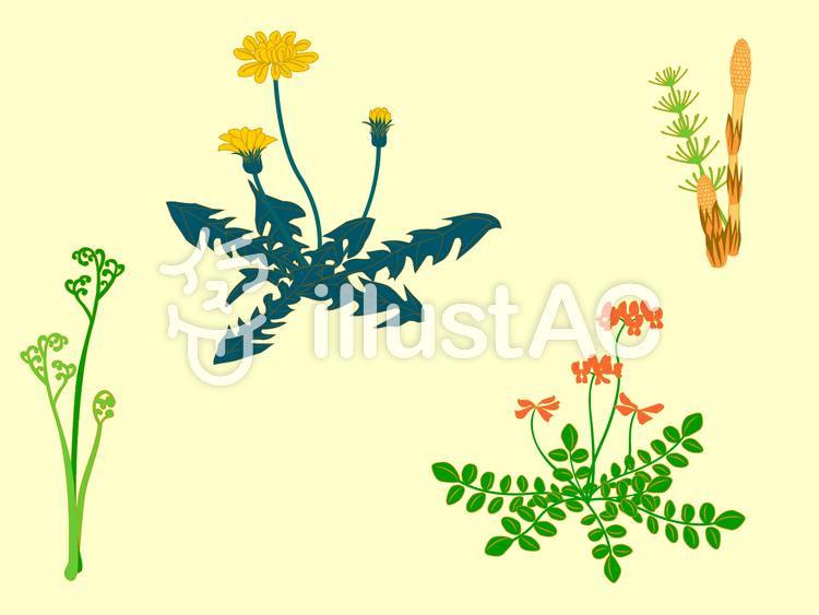春の野花のイラスト