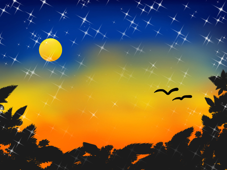 Night sky of summer