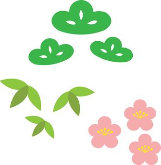 【Plants】 Shochiku Mei