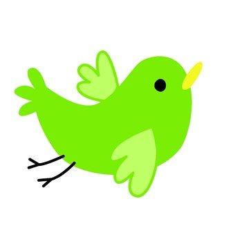 Green bird 13