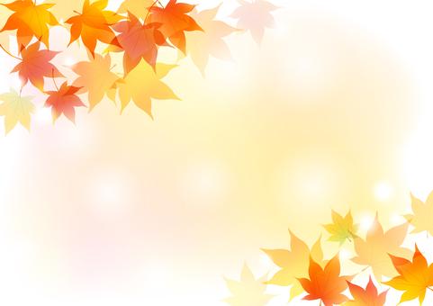 Autumn 185