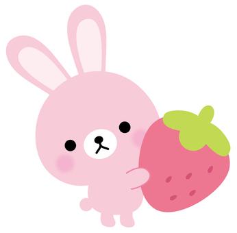 토끼 딸기