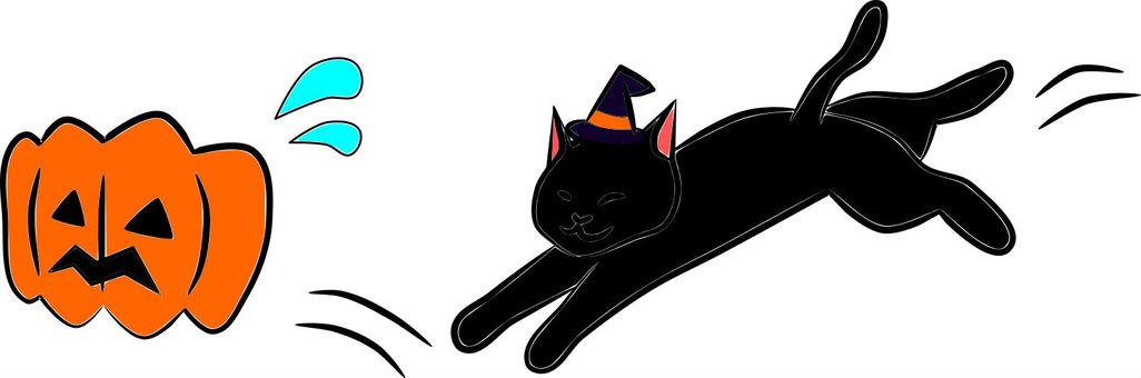Chasing Nyanko pumpkin