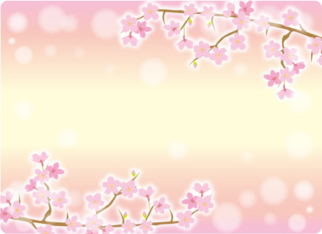 Sakura frame cherry blossoms