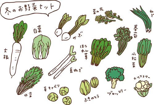 Winter vegetable set color